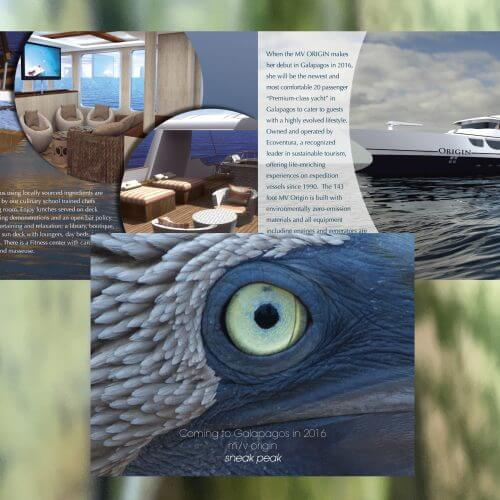 gate fold brochure design
